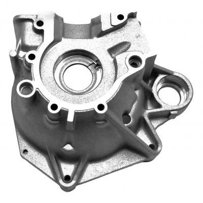 Carter Moteur Côté Allumage adaptable pour Nitro Ovetto SR F15