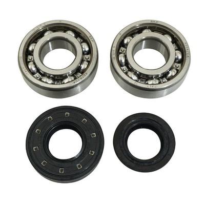 Kit roulements SKF 6204 C4 et spy nitrile Booster/Nitro