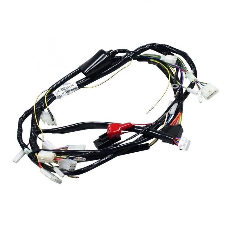 Faisceau électrique complet Derbi Senda / Gilera SMT Euro3 06- - 1