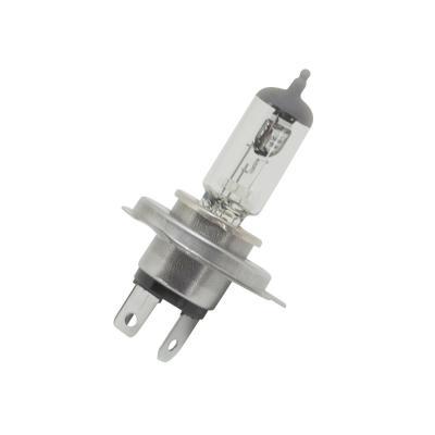 Ampoule HS1 12V 35/35W