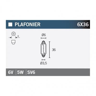 Ampoule Vicma 6x36 SV6 6V 5W