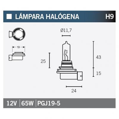 Ampoule Vicma H9 PGJ19-5 Halogène 12V 65W