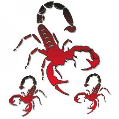 Autocollant Scorpion 10x12