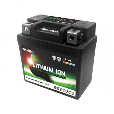 Batterie Skyrich Lithium Ion LTKTM04L sans entretien