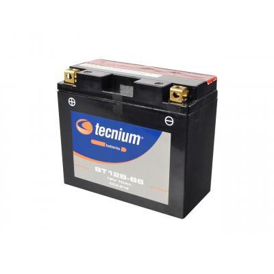 Batterie Tecnium BT12B-BS 12V 10 Ah