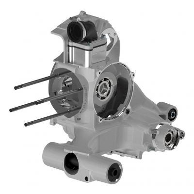 Carter moteur Malossi VR-One PX E 200