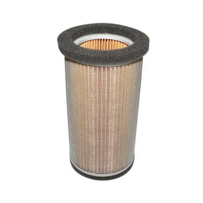 Filtre à air Hiflofiltro HFA2502