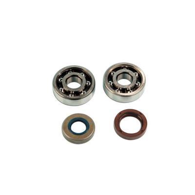 Kit roulements et spis SKF 6303 TN9 C3 AM6
