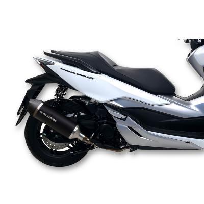 Pot d'échappement Malossi RX Black Forza 300