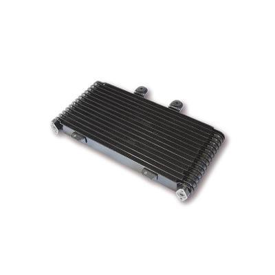 Radiateur d'huile Suzuki GSF 1200 Bandit WVA9 01-05