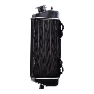 Radiateur noir Teknix Beta RR 05-