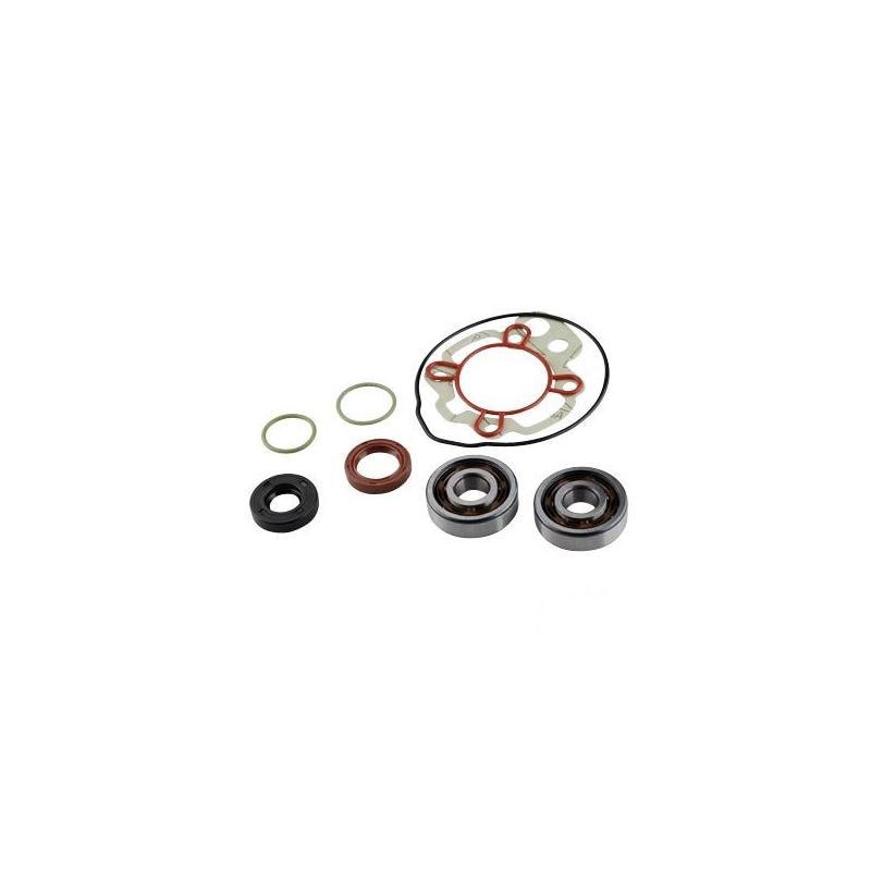Kit roulements + joints spy Artein Minarelli AM6 00-