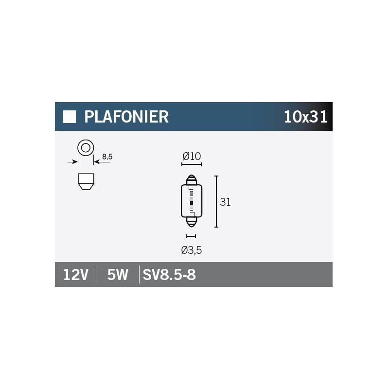 Ampoule Vicma 10x31 SV8,5-8 12V 5W