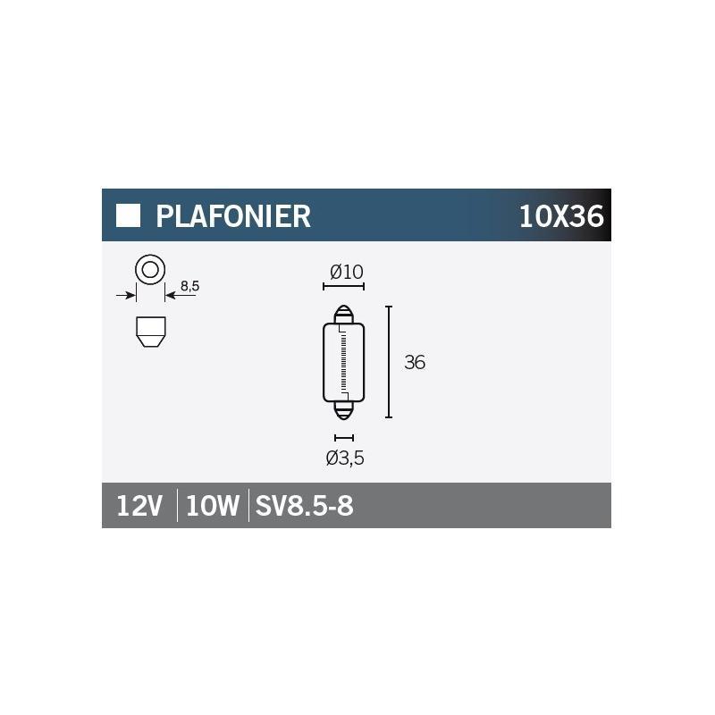 Ampoule Vicma 10x36 SV8,5-8 12V 10W