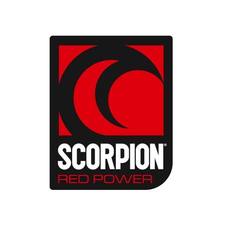 Autocollant scorpion 55 x 60 mm