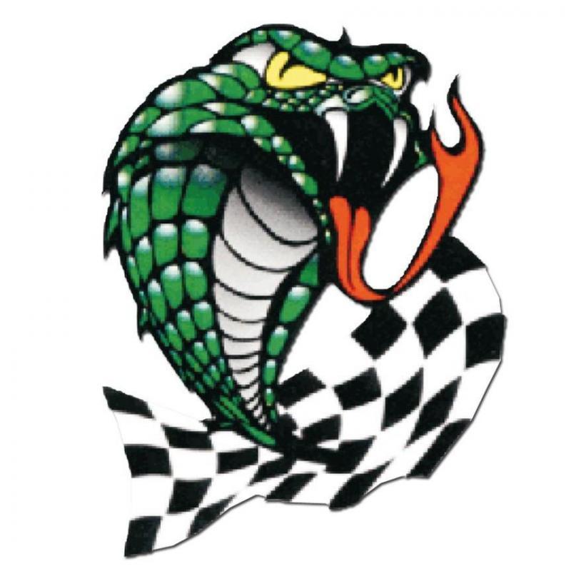 Autocollant Serpent damier 10x12