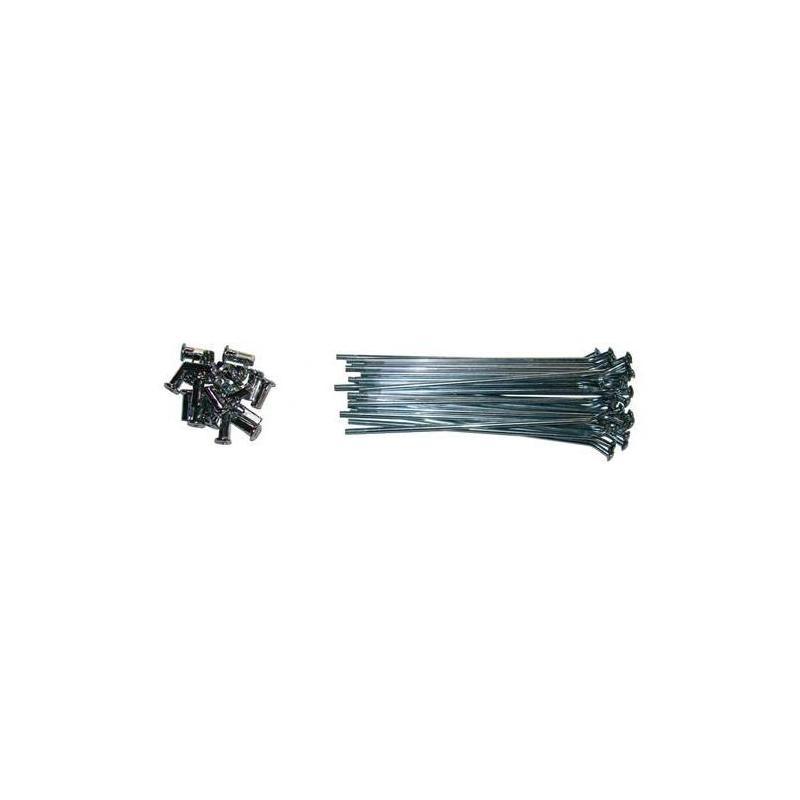 Jeu de rayons avant 14'' YCF 147mm/150mmxØ3,6mm (32 pièces)
