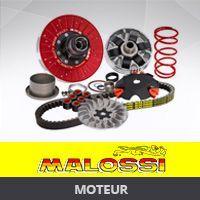 Moteur Malossi