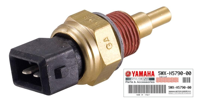 Sonde température Yamaha AM6