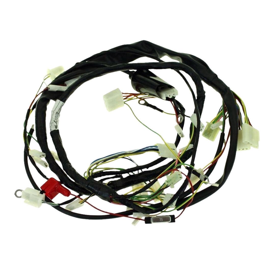 Faisceau électrique complet Derbi Senda / Gilera SMT Euro3 06-