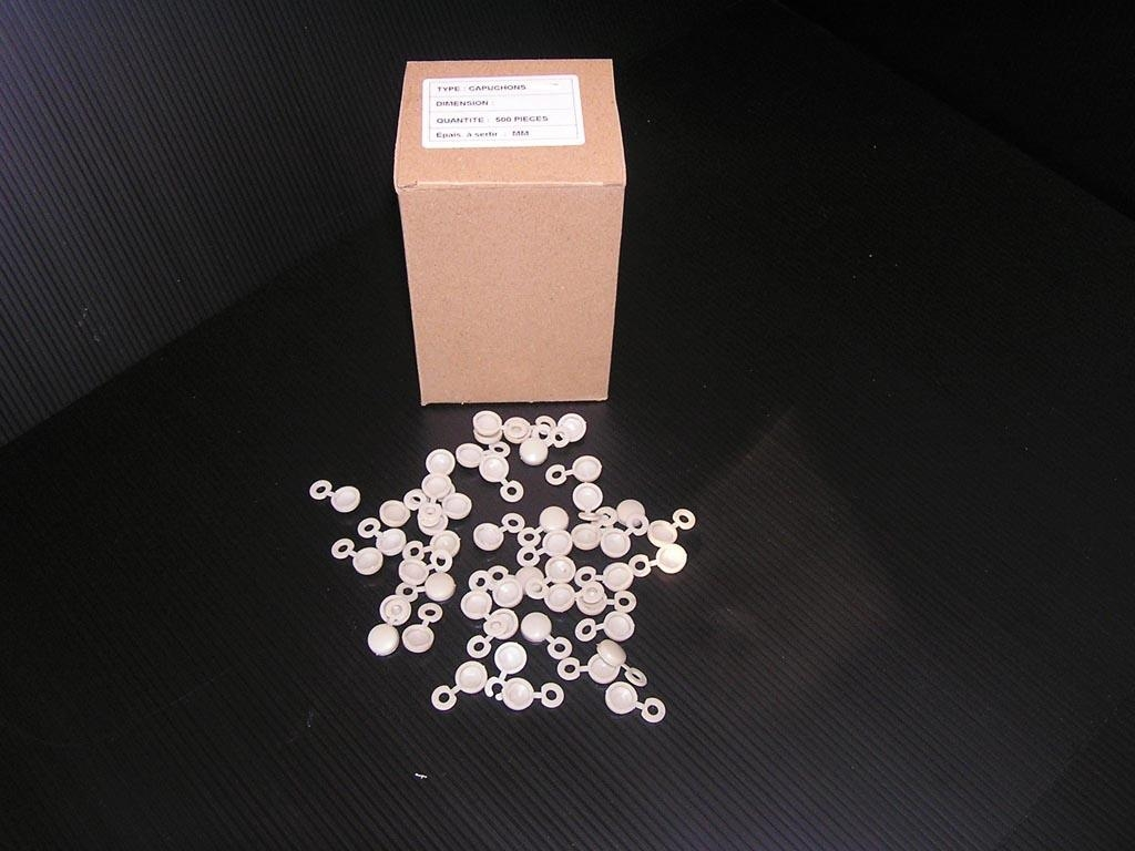 Caches rivets blancs x500